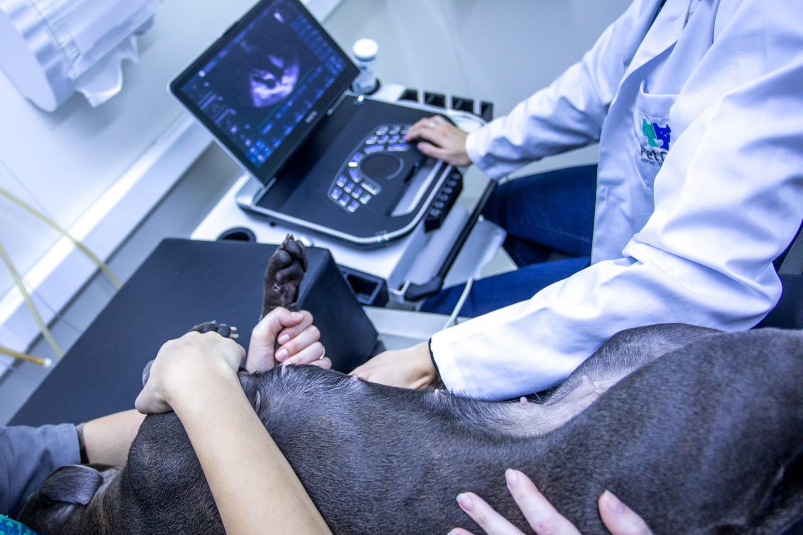 lcr 2844 1 - Ultrassonografia Abdominal Preventiva