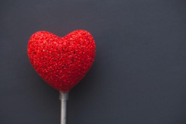 pexels kaboompics com 6371 - Uma História de Amor: Vicky !