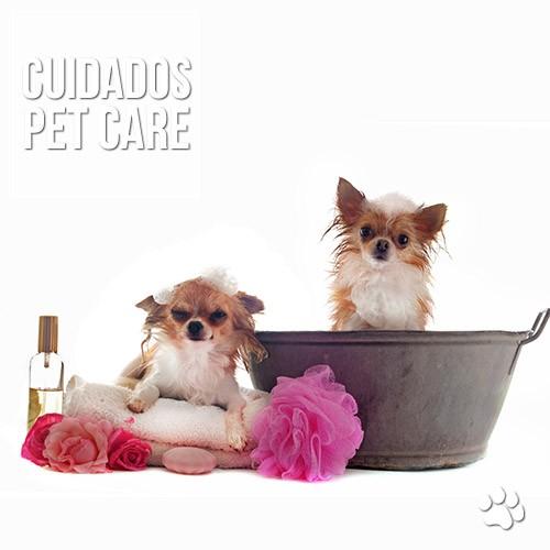 lavagem de ouvido em caes - Lavagem de ouvido em cães