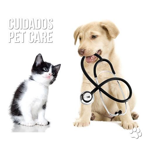 reacao vacinal em caes e gatos - Reação vacinal em cães e gatos