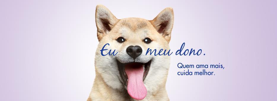 644093 447407635311063 1895189213 n - Hospital Veterinário Pet Care Inaugura Unidade no Ibirapuera