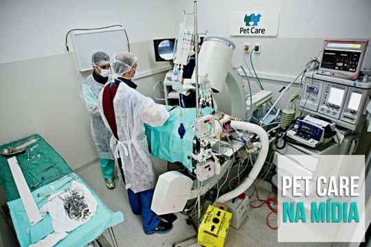 pet care - Pet Care na Veja São Paulo: Veterinários investem em aparelhos e exames de alta tecnologia