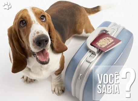petcare2rr - Cães e gatos terão passaporte e identificação eletrônica