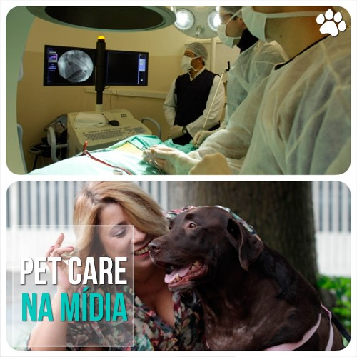 petcare17 - Pet Care no Estadão: Implantes de marca-passo em cães
