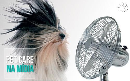 petcare12 - O calor é perigoso para cães e gatos