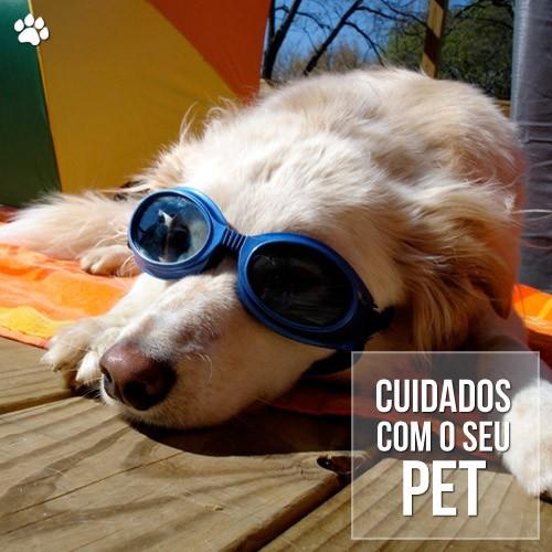 cuidados pet care1 - Temporada de verão e os cuidados especiais com os pets
