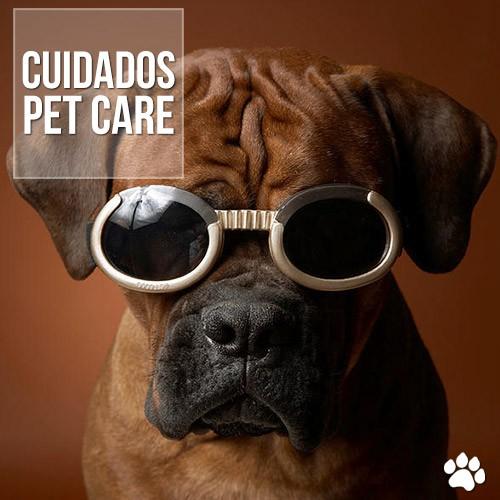 cuidados1 - Cegueira em cães: Como prevenir e como tratar seu pet?