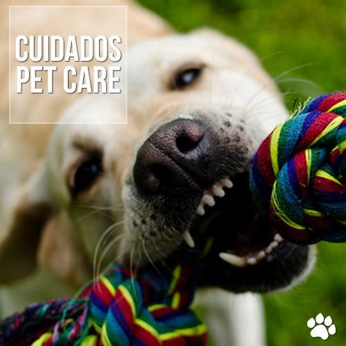cuidados2 - Troca de dentes em Cães e Gatos