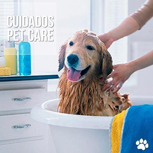 dicas de banhos para o seu pet - Dicas de banhos para o seu pet