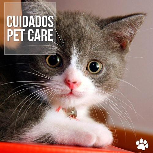 quais remedios sao proibidos para o gatos - Quais medicamentos são proibidos para os gatos?