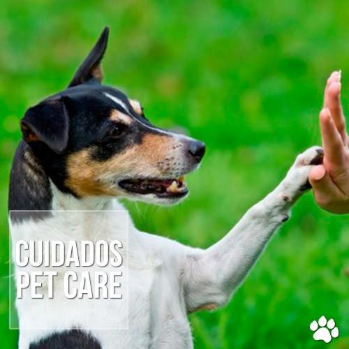 cuidados3 - Por que cortar as unhas de cães e gatos?