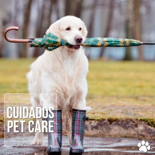 cuidados2 - A importância de vacinar os cães contra a Leptospirose