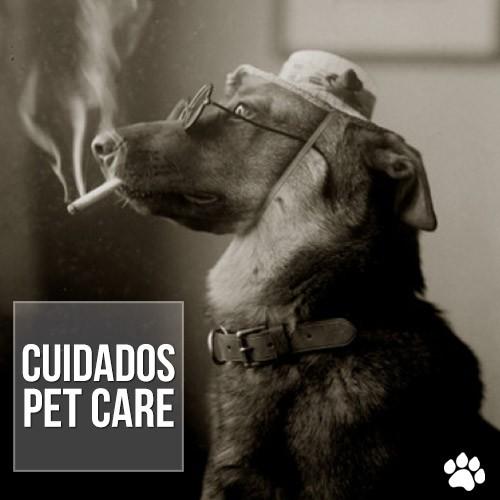 cuid0dos - Cigarro prejudica a saúde dos pets
