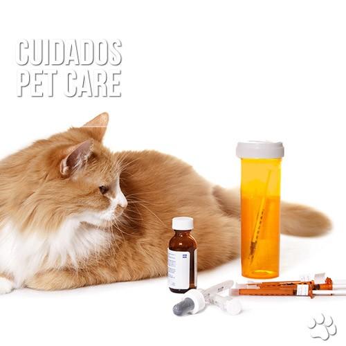 cuidados6 - A dificuldade em medicar os felinos