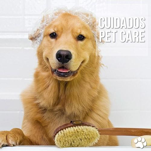 cuidados - Meu cãozinho está cheirando mal, o que pode ser?