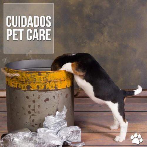 por que os caes reviram as latas de lixo - Por que os cães reviram as latas de lixo?