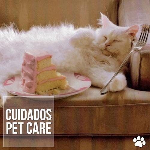 caes e gatos podem ter diabetes - Cães e gatos podem ter diabetes?