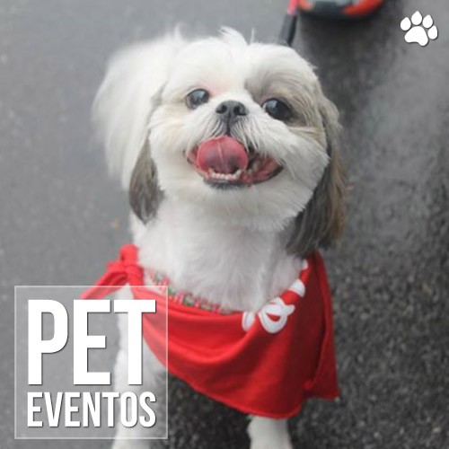 sp dog run 2014 - SP DOG RUN 2014 - O Pet Care estava lá