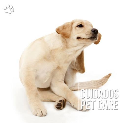 atopia ou dermatite atopica em caes - Atopia ou dermatite atópica em cães
