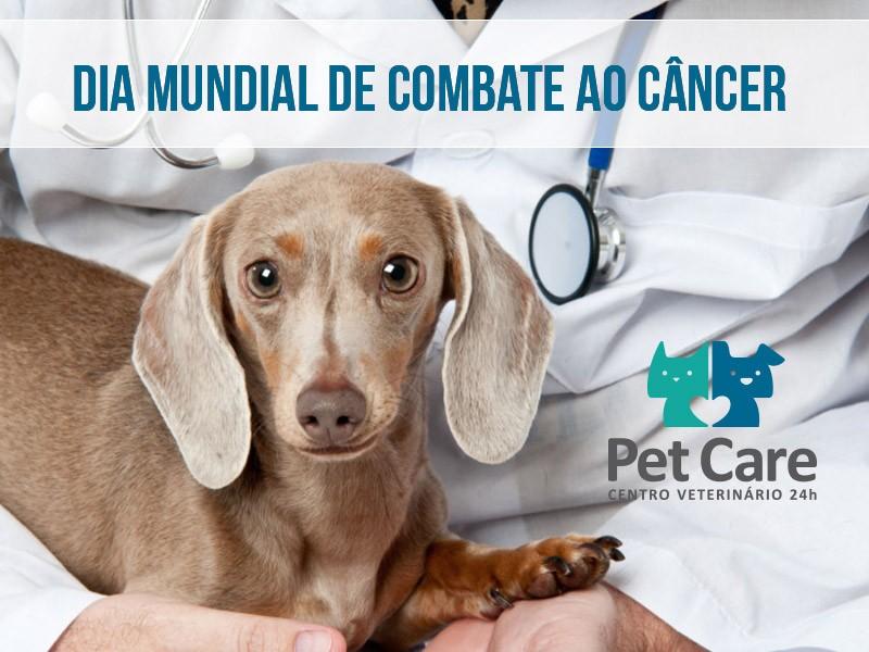 melanoma em caes e gatos - Melanoma em cães e gatos