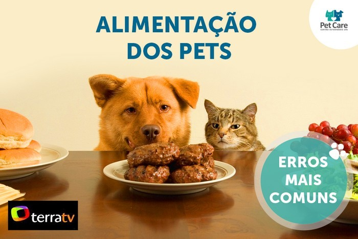 pet care na terra tv alimentacao dos pets - Pet Care na Terra TV: Alimentação dos pets