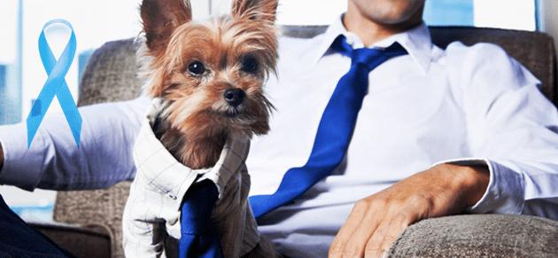 caes novembro azul - Novembro azul para cães: pets também podem ter problemas de próstata