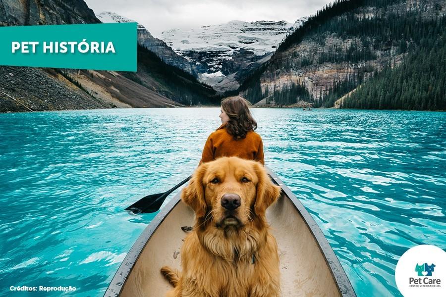 pet care blog - Cachorro que viaja para lugares paradisíacos tem as fotos mais lindas do Instagram