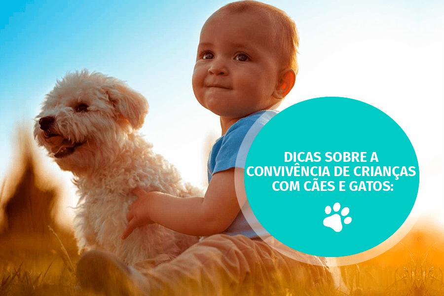 pet care 01 - Dicas sobre a convivência de crianças com cães e gatos: