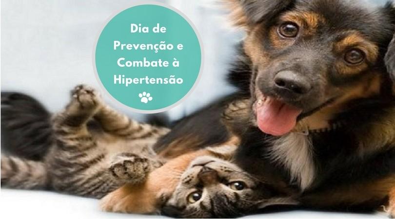 dia de prevencao e combate a hipertensao - Dia de Prevenção e Combate à Hipertensão: Cães e Gatos