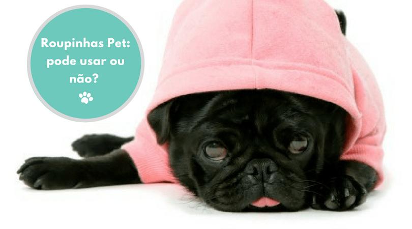 roupinhas pet  pode usar ou nao  - Roupinhas Pet: Pode usar ou não?