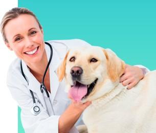 image menu hospital 1 - Costelinha