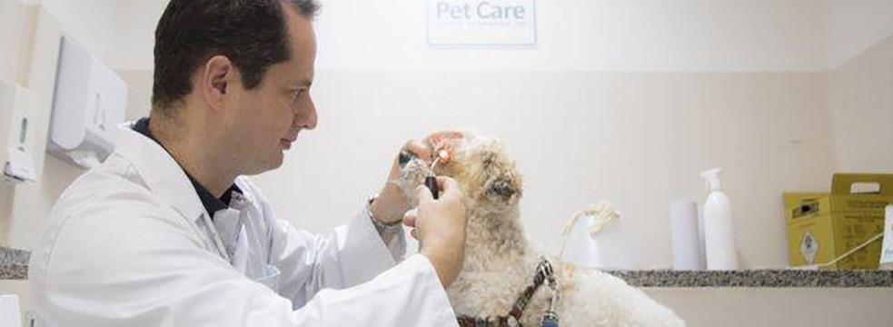 oftamologia petcare - Oftalmologia