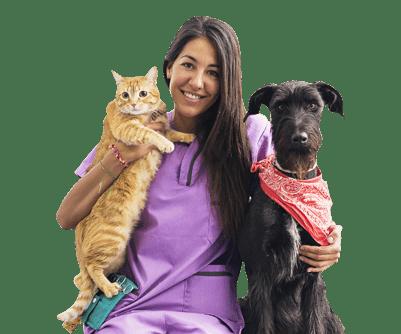para veterinarios2 - Para Veterinários
