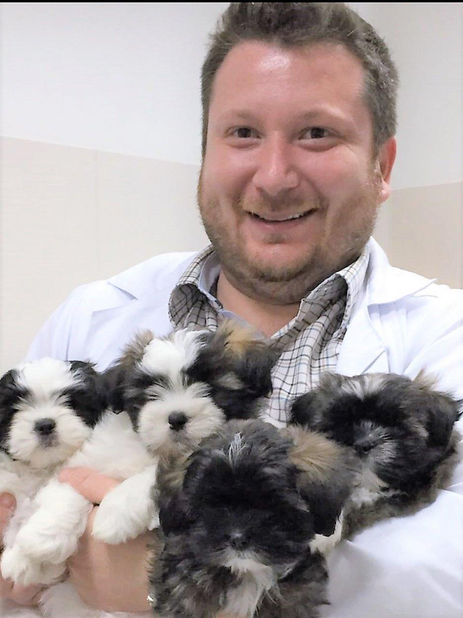 rafael diretor morumbi e1538768960652 - Primeiros cuidados com a fêmea e os filhotes no pós-parto de cães e gatos