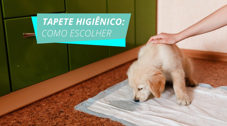 prancheta 1 copia 1 - Como escolher o melhor tapete higiênico para seu cão