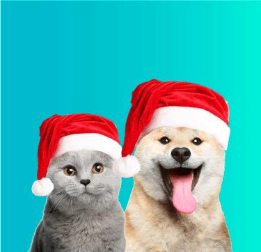 banner site - Desejo de Natal