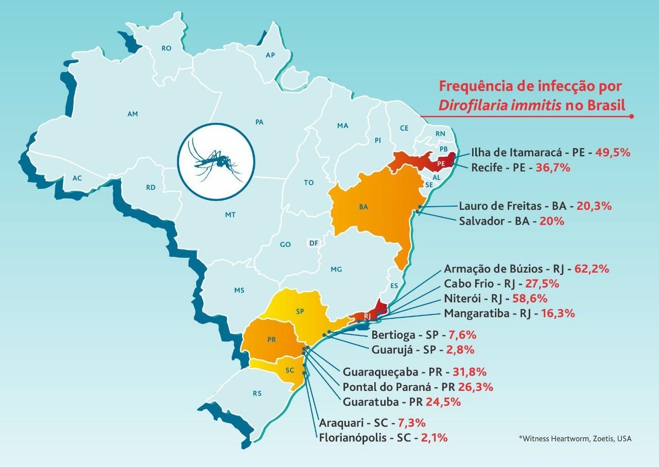 whatsapp image 2019 05 28 at 18 29 49 - VERME DO CORAÇÃO
