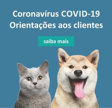 site mobile corona clientes - Informativo COVID-19 e os pets, quais os cuidados necessários?