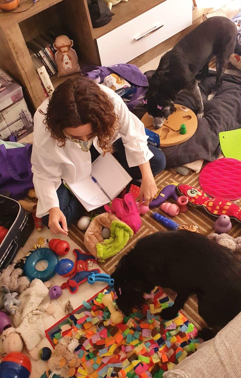 luiza - Terapia Comportamental Cães e Gatos