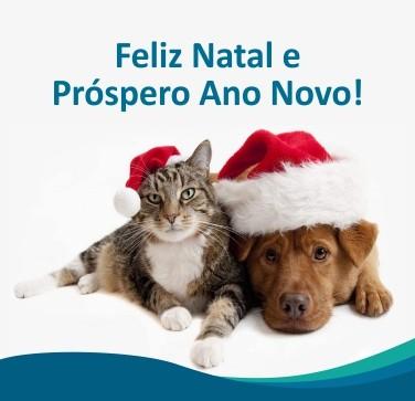 baner natal 2020 site mobile - Festas de Natal e Ano Novo? Dicas e Cuidados com o seu Pet