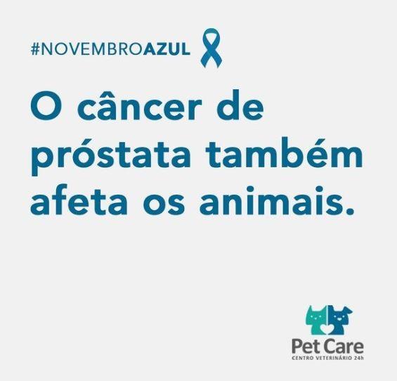 1 de novembro de 2020 - A Campanha #NovembroAzul chega para a conscientizar a respeito da prevenção contra o câncer de próstata e para prevenir o aumento prostático. ⠀