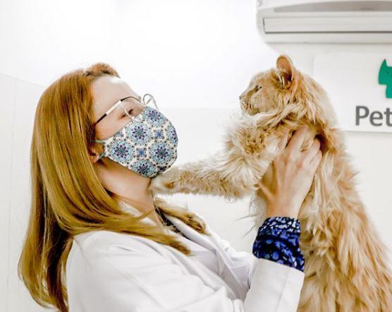 """20 de novembro de 2020 - Você sabia que o Pet Care possui um certificado americano, emitido pela American Association of Feline Practioners, chamado """"Cat Friendly""""?"""