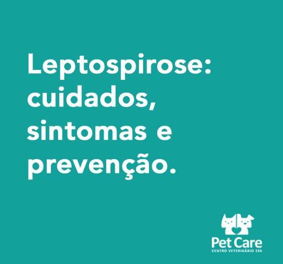 22 de janeiro de 2021 - Você sabia que a Leptospirose acomete cães com mais frequência no verão?