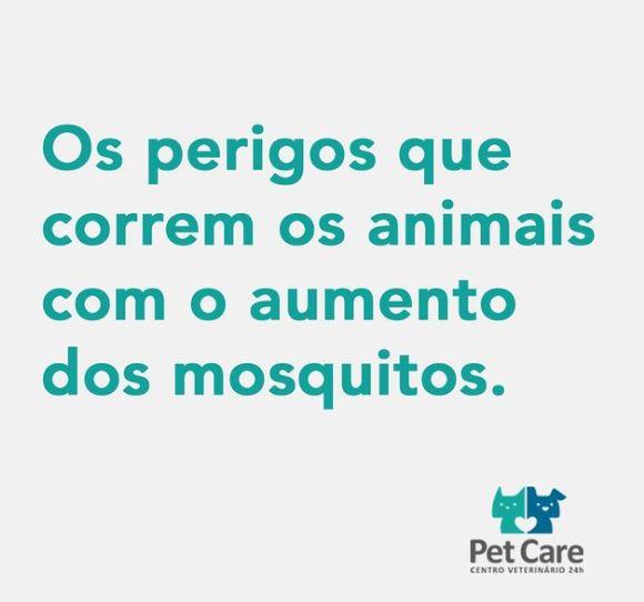 9 de janeiro de 2021 1 - Precisamos nos proteger e proteger nossos animais contra os mosquitos
