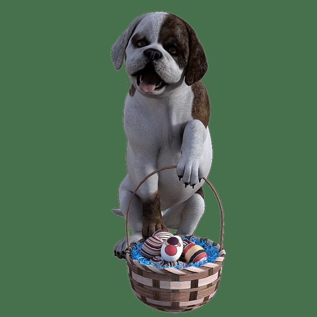 dog easter 4564060 640 - Cuidados na Páscoa: o chocolate é um perigo para seu pet