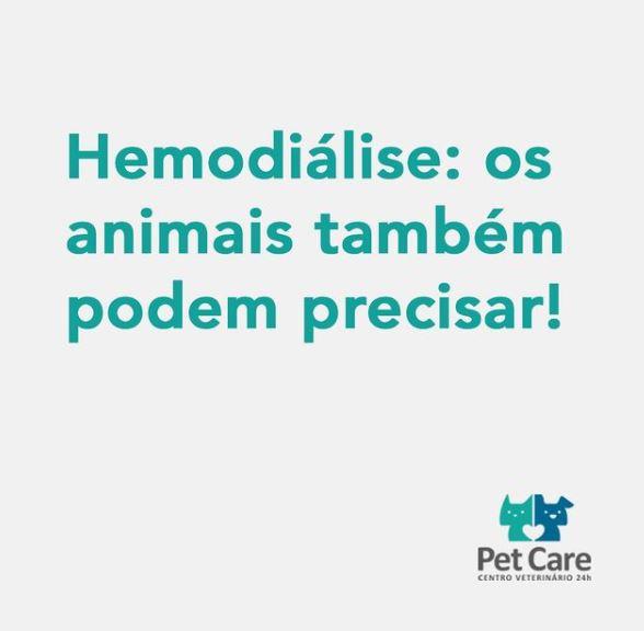 hemo - Hemodiálise em cães e gatos