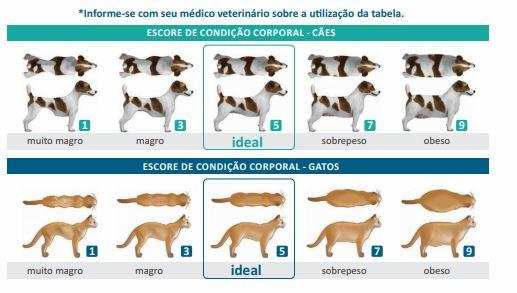 whatsapp image 2021 04 06 at 15 26 45 - Como saber se o animal está obeso?