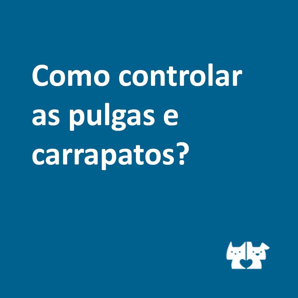 whatsapp image 2021 04 30 at 19 12 53 - Controle de pulgas e carrapatos em animais adultos e idosos.