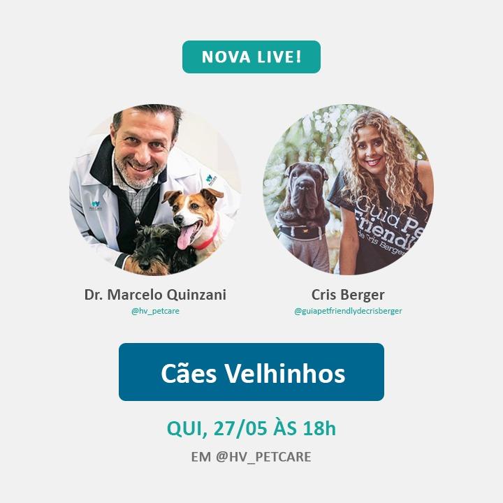 whatsapp image 2021 05 25 at 15 52 07 - Nova live: Como é cuidar de um cão idoso?