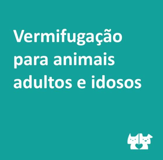 vermifu - Como controlar parasitas intestinais em animais adultos e idosos?
